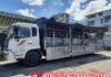 Dịch vụ cho thuê xe tải chở hàng 10 tấn tại TPHCM